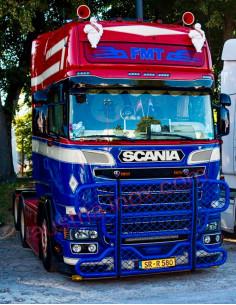 Rammschutz Scania R